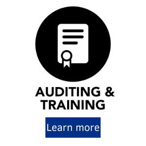 Auditing and Training